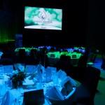 CCFNT Earth Awards 2015-1a