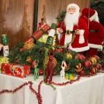 CCFNT Christmas (Nov 2015)-3